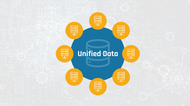 Unified Data Model at Anevis Solutions