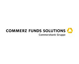 logo_wp_CFS1